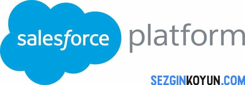 Salesforce Nedir
