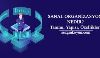 Sanal Organizasyon Nedir? Örnekleri, Özellikleri, Yapısı