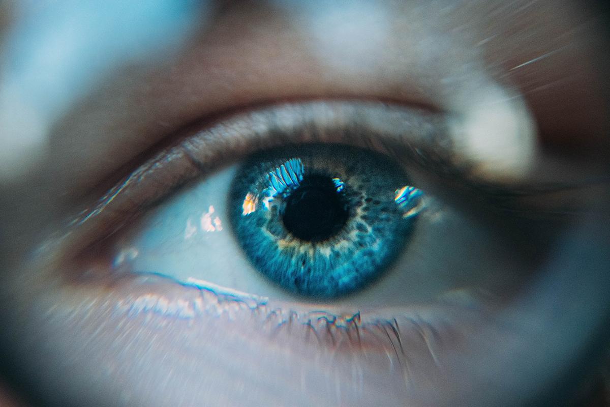 Grup Önyargısı: Jane Elliott'un Kahverengi Gözler ve Mavi Gözler Deneyi