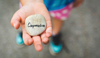 Kooperatiflerin İşletmedeki Rolü
