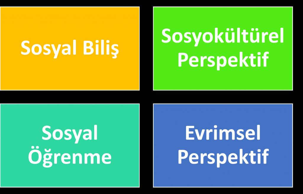 Sosyal Psikolojinin Temel Perspektifleri