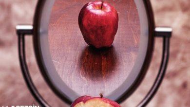 Photo of Kendini Algılama Teorisi: Tanım ve Örnekler