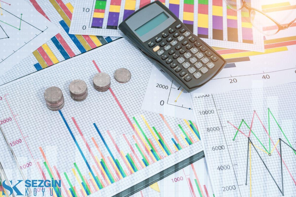 Pazarlama Kontrolleri: Pazar Araştırması, Test Pazarlama ve Pazarlama İstatistikleri