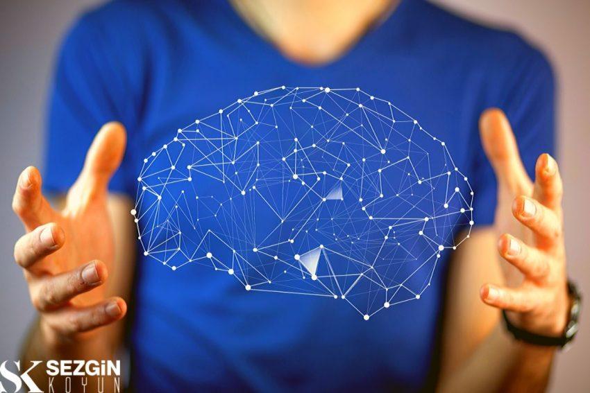 Senge'nin Zihinsel Modelleri: Tanım ve Açıklama