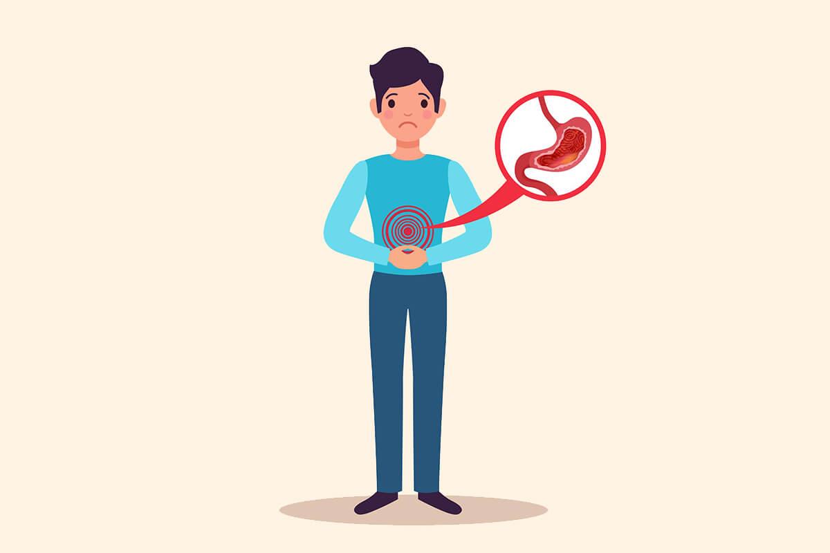 Mide ve Otonom Sinir Sistemi Kontrollerinin Anatomisi ve Fizyolojisi