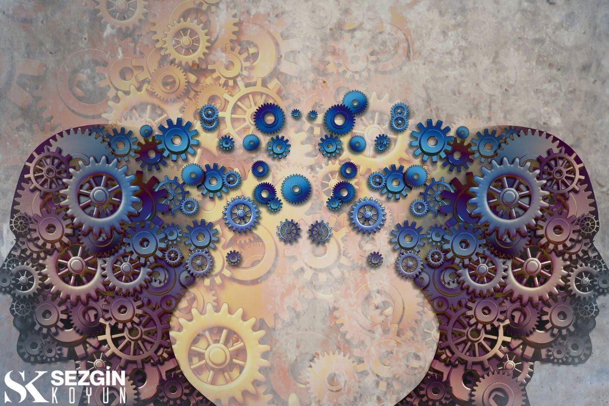 Sosyal Epidemiyoloji: Tanım ve Yöntemler