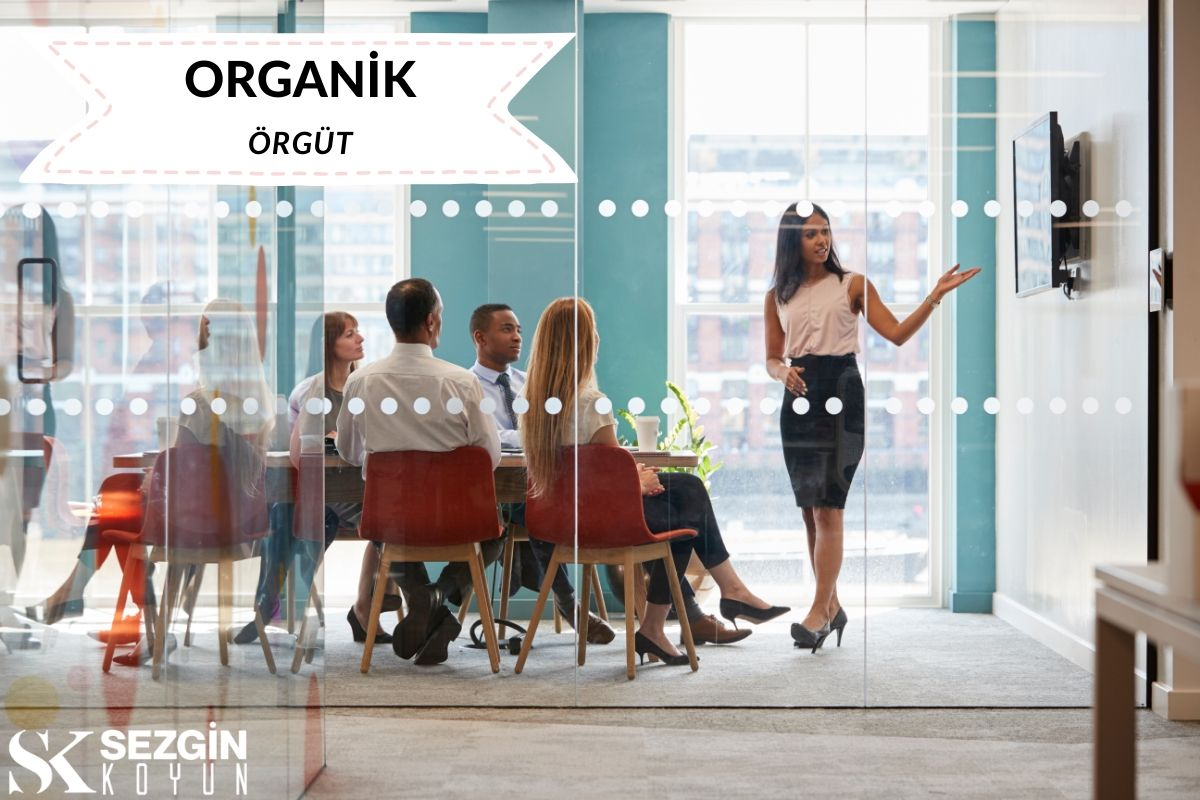 Organik Örgüt Nedir?- Tanımı ve Özellikleri