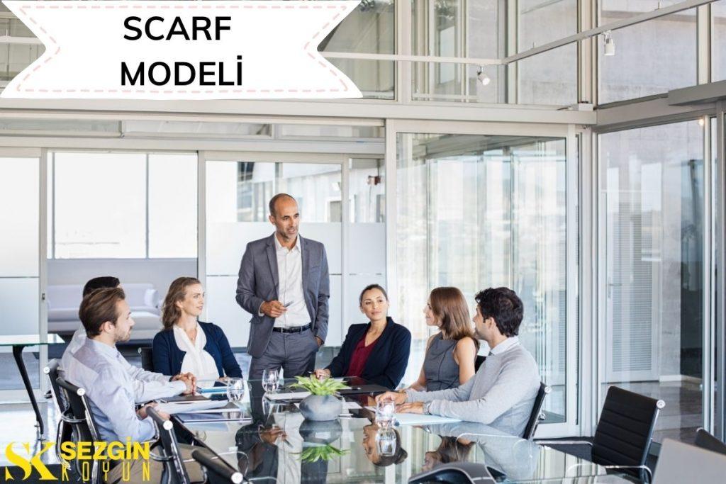 David Rock'ın Kariyer, Pazarlama ve Liderlikte SCARF Modeli