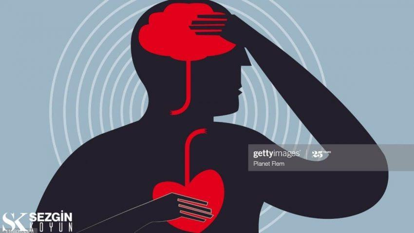 Serebral Korteks Nedir? - Beyin Yapıları ve İşlevleri