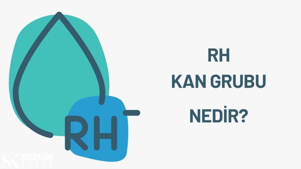Rh Kan Grubu, Rh Faktörü ve Eritroblastoz Fetalis